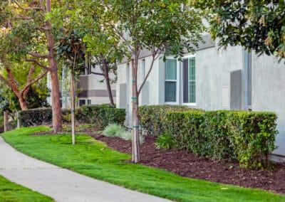 Pet-friendly apartments garden grove