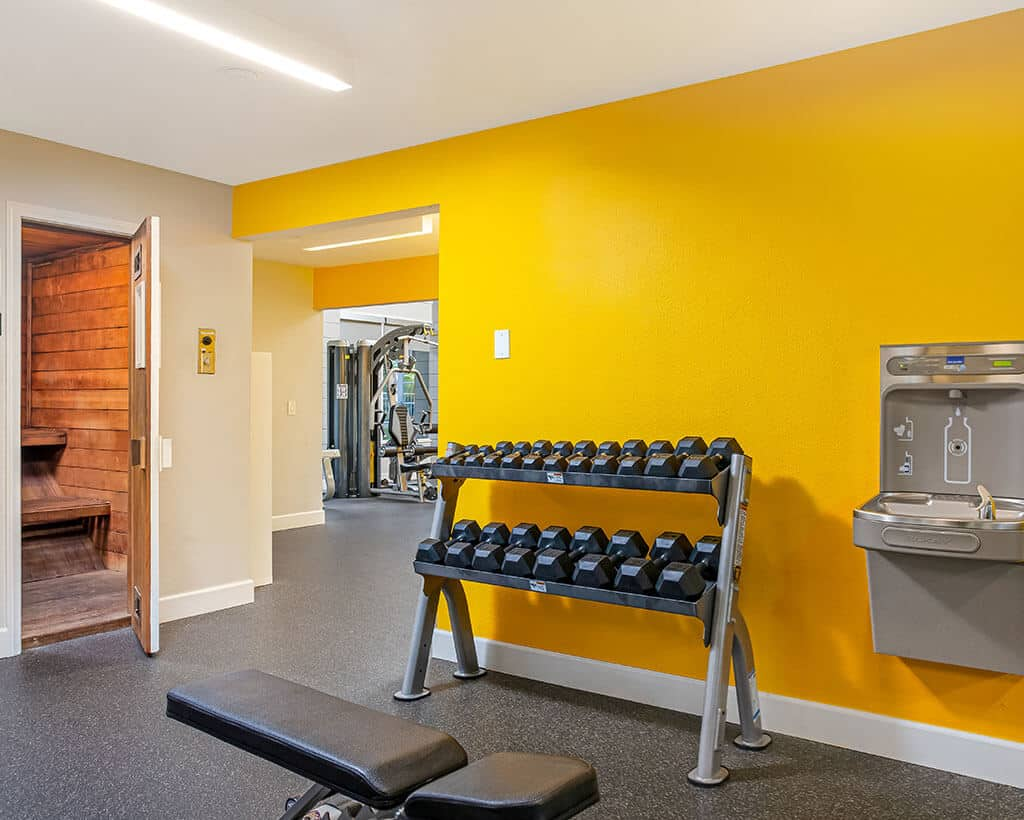 gym amenities showing dumbells